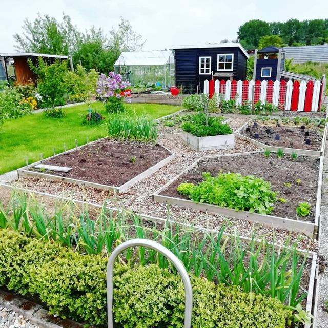 Khu vườn trồng các loại rau và hoa đẹp như mơ của cặp vợ chồng trẻ yêu thiên nhiên - Ảnh 22.