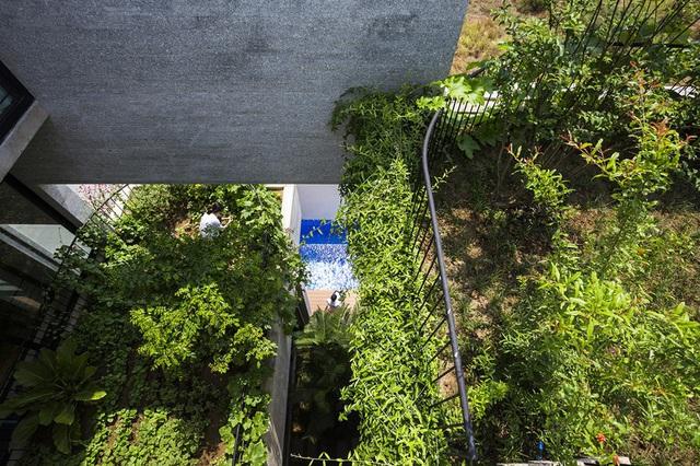 Nhà có nhiều ban công độc đáo, cây xanh mọc tua tủa khắp nơi - Ảnh 10.