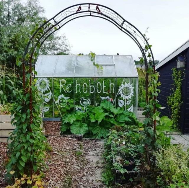 Khu vườn trồng các loại rau và hoa đẹp như mơ của cặp vợ chồng trẻ yêu thiên nhiên - Ảnh 11.