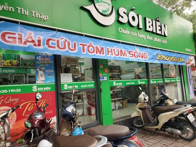 Giải cứu tôm hùm ở Hà Nội: Hàng đồng giá 299.000 đồng/con cháy hàng - Ảnh 2.