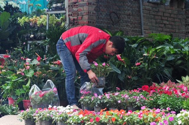 Độc đáo phiên chợ hoa, cây cảnh năm ngày họp một lần tại Hà Nội - Ảnh 2.