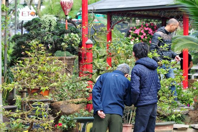 Độc đáo phiên chợ hoa, cây cảnh năm ngày họp một lần tại Hà Nội - Ảnh 6.