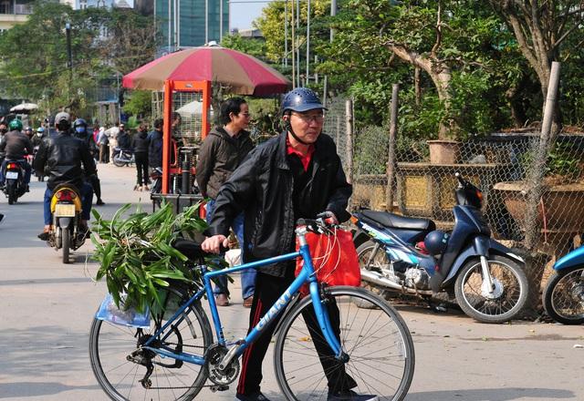Độc đáo phiên chợ hoa, cây cảnh năm ngày họp một lần tại Hà Nội - Ảnh 5.