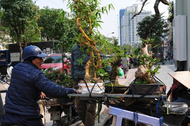 Độc đáo phiên chợ hoa, cây cảnh năm ngày họp một lần tại Hà Nội - Ảnh 9.