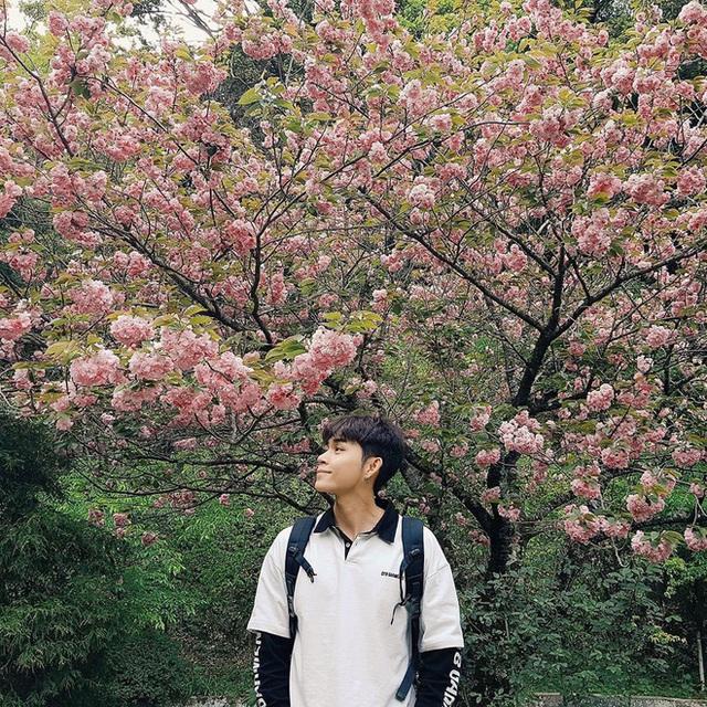 Sơn Tùng diện đồ như trai châu Âu, Trấn Thành đeo túi Dior 2.700 USD - Ảnh 6.