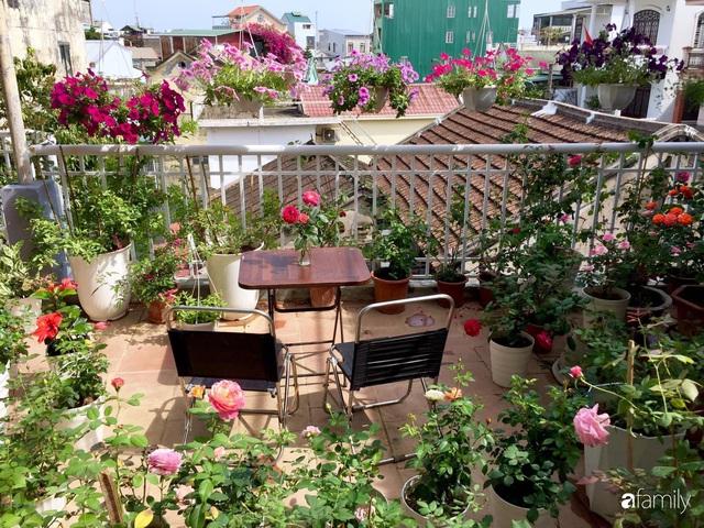 Mê hoa hồng, cô gái trẻ xứ Huế quyết tâm thức khuya dậy sớm tạo cả khu vườn hồng rực rỡ trên sân thượng - Ảnh 2.