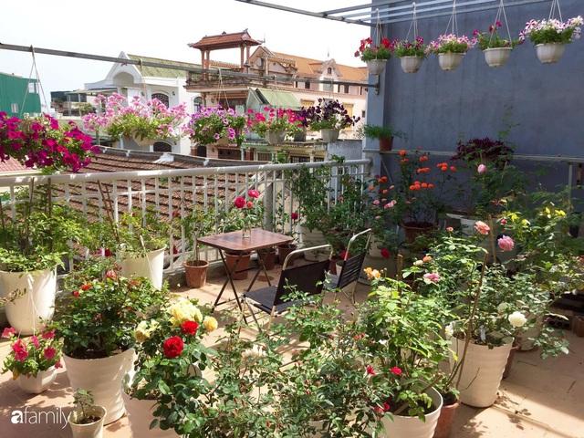 Mê hoa hồng, cô gái trẻ xứ Huế quyết tâm thức khuya dậy sớm tạo cả khu vườn hồng rực rỡ trên sân thượng - Ảnh 3.
