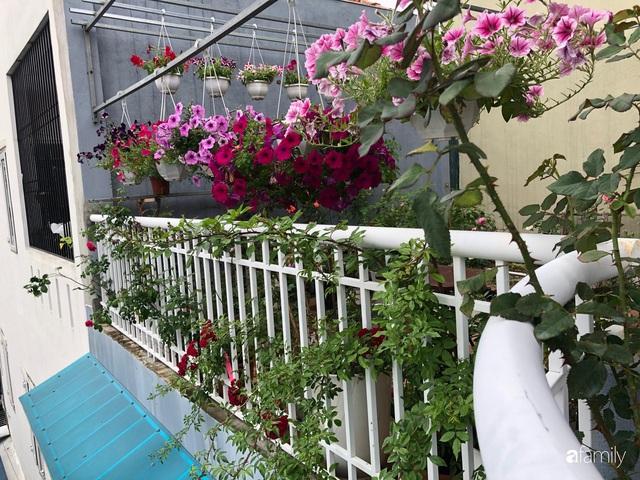 Mê hoa hồng, cô gái trẻ xứ Huế quyết tâm thức khuya dậy sớm tạo cả khu vườn hồng rực rỡ trên sân thượng - Ảnh 17.