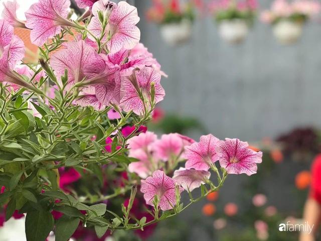 Mê hoa hồng, cô gái trẻ xứ Huế quyết tâm thức khuya dậy sớm tạo cả khu vườn hồng rực rỡ trên sân thượng - Ảnh 19.