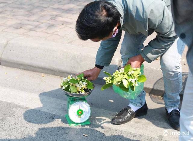 Hoa bưởi đầu mùa xuống phố, thơm nồng nàn khắp phố phường Hà Nội - Ảnh 7.