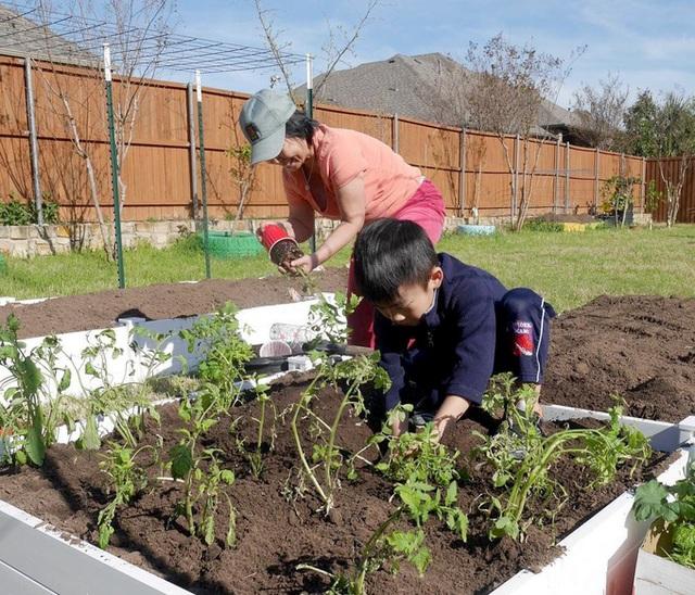 Con gái tặng mẹ vườn rau Việt trên đất Mỹ  - Ảnh 4.