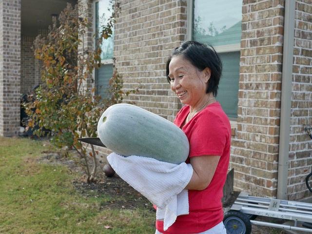 Con gái tặng mẹ vườn rau Việt trên đất Mỹ  - Ảnh 8.