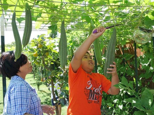 Con gái tặng mẹ vườn rau Việt trên đất Mỹ  - Ảnh 9.