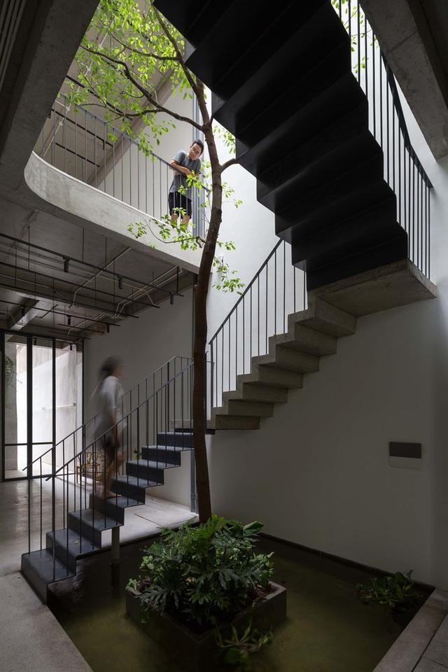 Ngôi nhà ống đẹp dịu dàng lấy cảm hứng từ những ngôi nhà truyền thống cũ của Hà Nội - Ảnh 4.
