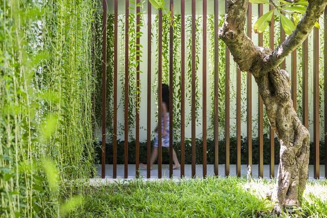 Ngôi nhà 1 tầng mát mẻ quanh năm nhờ cây xanh phủ khắp lối - Ảnh 8.
