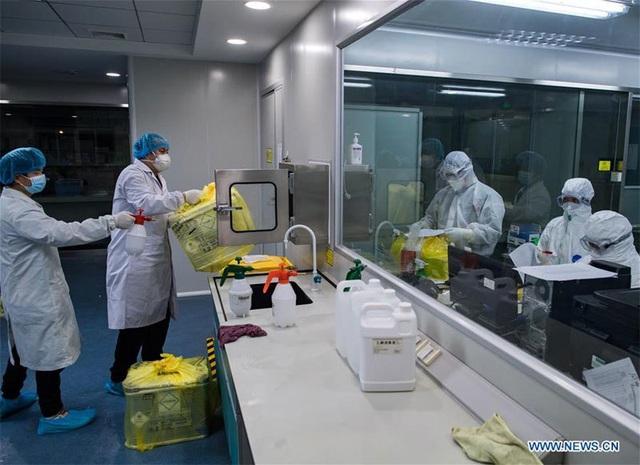 Hình ảnh những người chuyên gom mẫu bệnh phẩm Covid-19 ở Vũ Hán - Ảnh 9.