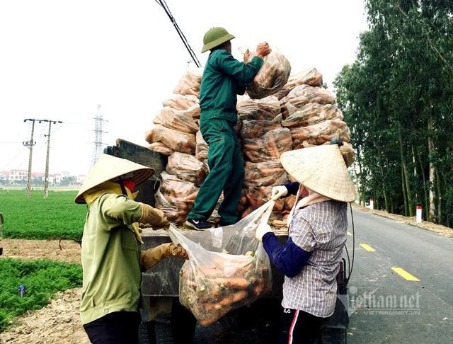 Cánh đồng 100 tỷ đồng rực 1 màu đỏ hiếm có Việt Nam - Ảnh 10.