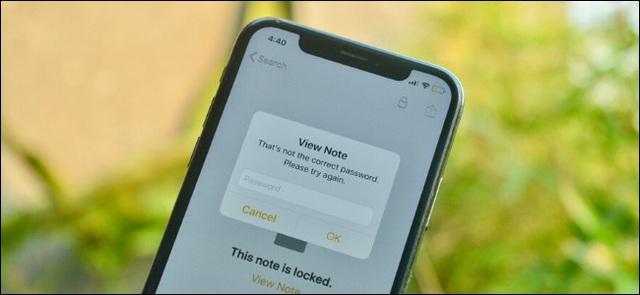 Làm gì khi quên mật khẩu bảo vệ ghi chú Apple Notes trên iPhone, iPad và Mac? - Ảnh 1.