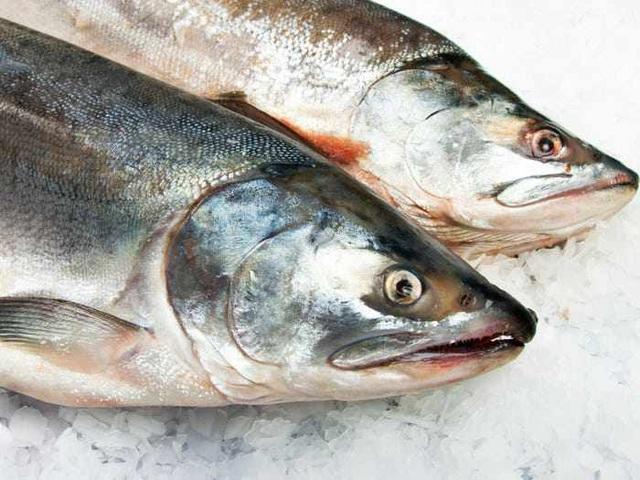 6 mối nguy tiềm ẩn có thể xảy ra khiăn đồ sống như sushi, sashimi  - Ảnh 1.
