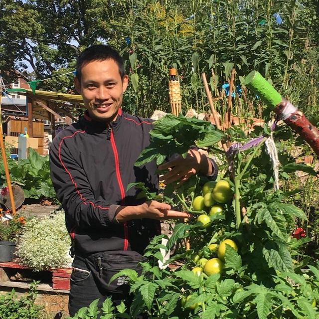 Chuyên gia trong lĩnh vực nhà vườn tại Hà Nội chia sẻ cách trồng rau đúng cách, đảm bảo nhà phố thoải mái rau sạch cho cả gia đình - Ảnh 5.