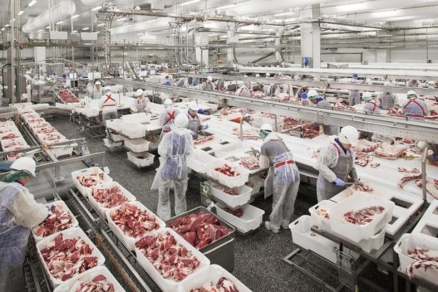 Thịt lợn Nga ồ ạt về Việt Nam, ép giá hàng trong nước - Ảnh 2.