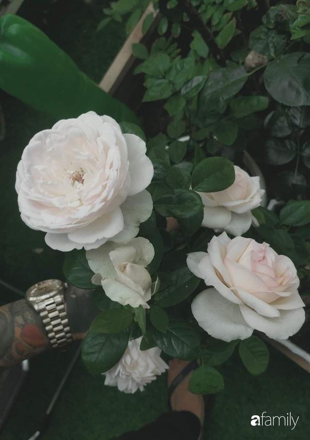 Ngôi nhà đẹp yên bình, lãng mạn nhờ người đàn ông đảm đang tự decor vườn và trồng đủ loại hồng ở Sài Gòn - Ảnh 25.