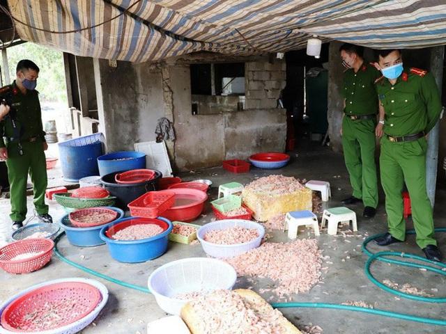 Biến hàng trăm kg tôm chết thành tôm nõn mỗi ngày - Ảnh 1.