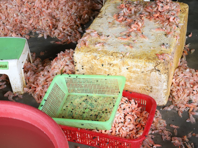 Biến hàng trăm kg tôm chết thành tôm nõn mỗi ngày - Ảnh 2.