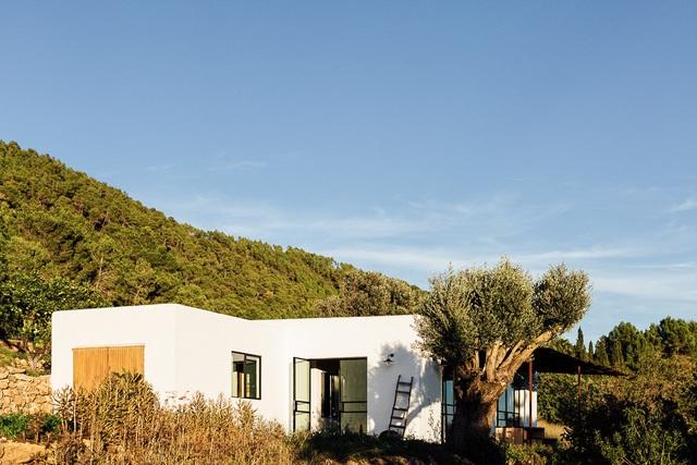 Căn nhà cấp 4  màu trắng nổi bật giữa thiên nhiên hoang sơ với cách thiết kế rất sinh động - Ảnh 4.