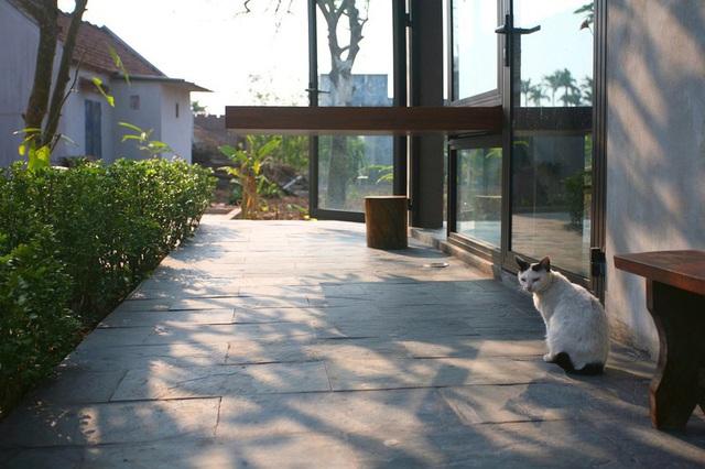 Ngôi nhà 78 m2 thiết kế hiện đại nhưng vẫn đượm hồn quê - Ảnh 7.