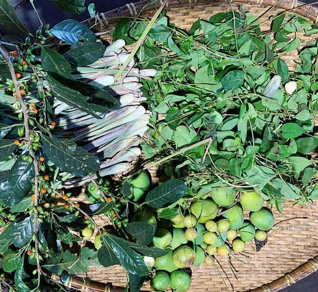 Hoa hậu HHen Niê mải mê thu hoạch rau trái trong vườn, rẫy - Ảnh 9.