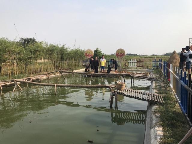 MC Quyền Linh đi dép tổ ong dẫn show thực tế mới - Ảnh 4.