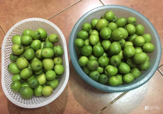 Mẹ đảm mát tay trồng đủ loại cây trái tốt tươi trên sân thượng ở Hà Nội - Ảnh 12.