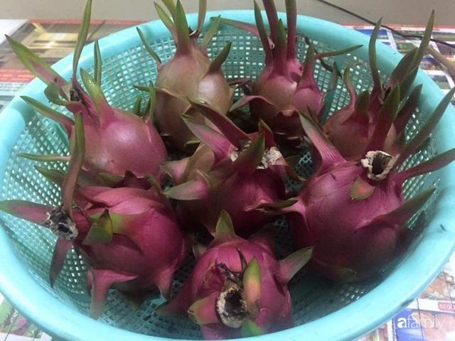 Mẹ đảm mát tay trồng đủ loại cây trái tốt tươi trên sân thượng ở Hà Nội - Ảnh 13.