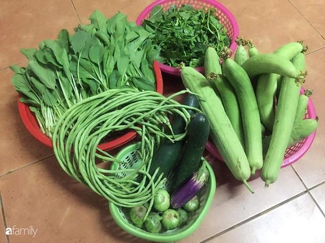Mẹ đảm mát tay trồng đủ loại cây trái tốt tươi trên sân thượng ở Hà Nội - Ảnh 6.