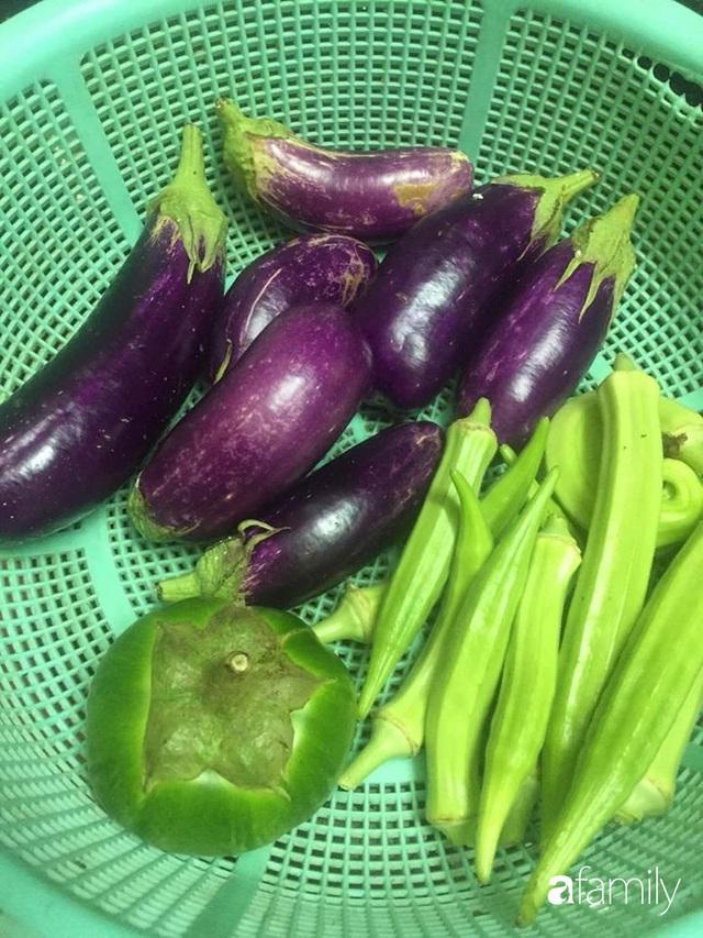 Mẹ đảm mát tay trồng đủ loại cây trái tốt tươi trên sân thượng ở Hà Nội - Ảnh 10.