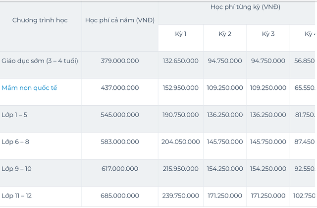 Sốc với mức học phí lên đến cả tỷ đồng/năm của các trường quốc tế ở TP.HCM - Ảnh 6.