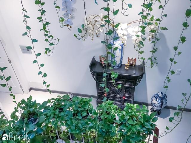 Giữa Sài Gòn náo nhiệt, vẫn có căn nhà ống cực chill và không gian xanh mát với chi phí 20 triệu đồng mua cây xanh - Ảnh 4.