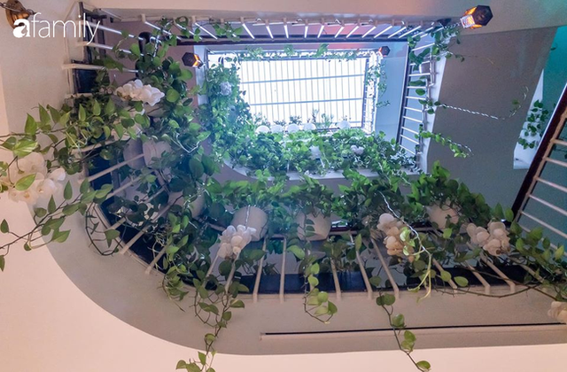 Giữa Sài Gòn náo nhiệt, vẫn có căn nhà ống cực chill và không gian xanh mát với chi phí 20 triệu đồng mua cây xanh - Ảnh 8.