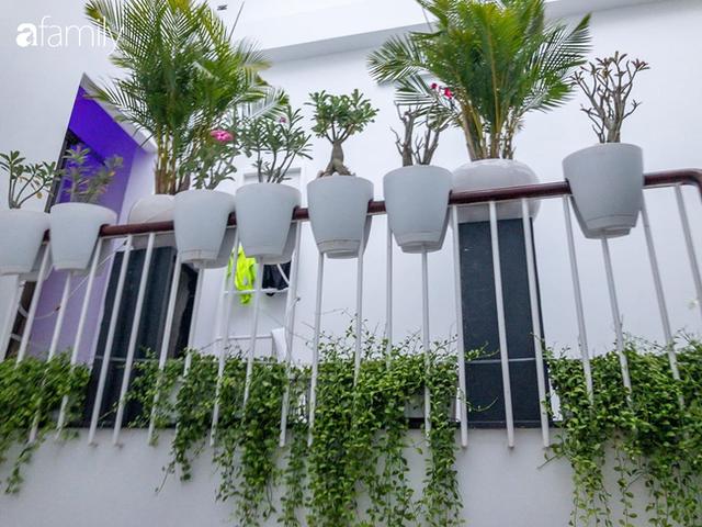 Giữa Sài Gòn náo nhiệt, vẫn có căn nhà ống cực chill và không gian xanh mát với chi phí 20 triệu đồng mua cây xanh - Ảnh 9.