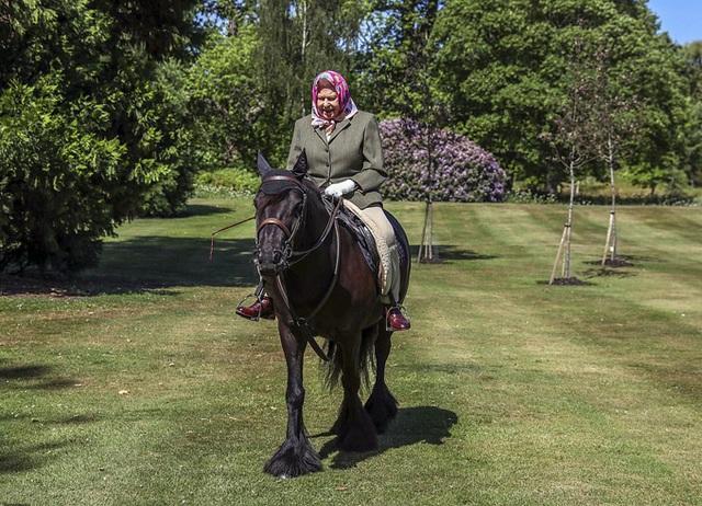 Nữ hoàng cưỡi ngựa sau 10 tuần cách ly - Ảnh 2.