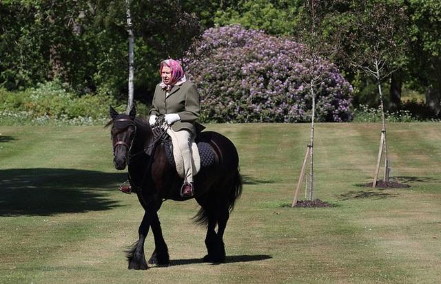 Nữ hoàng cưỡi ngựa sau 10 tuần cách ly - Ảnh 3.