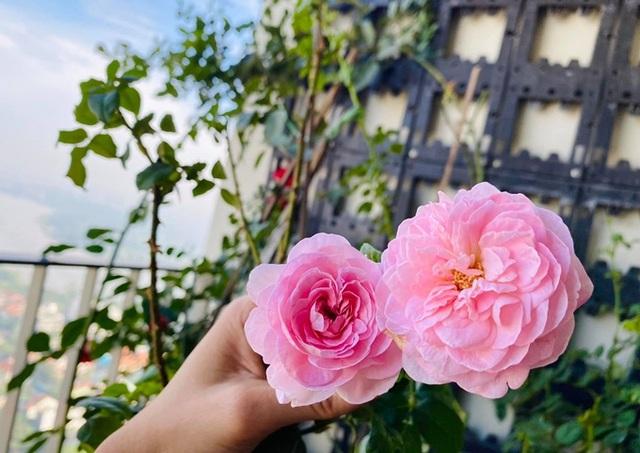 Căn hộ ngập sắc hoa của Ngọc Diễm - Ảnh 11.