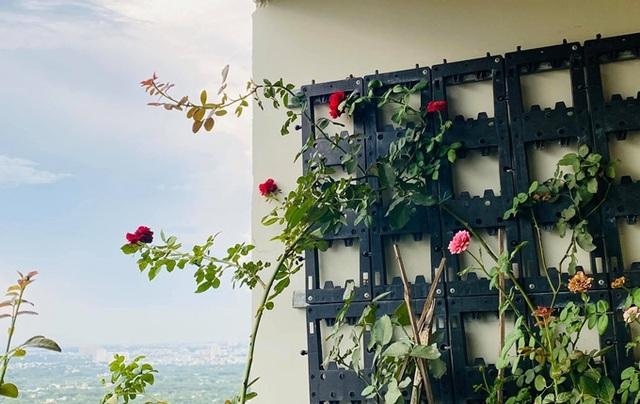 Căn hộ ngập sắc hoa của Ngọc Diễm - Ảnh 10.