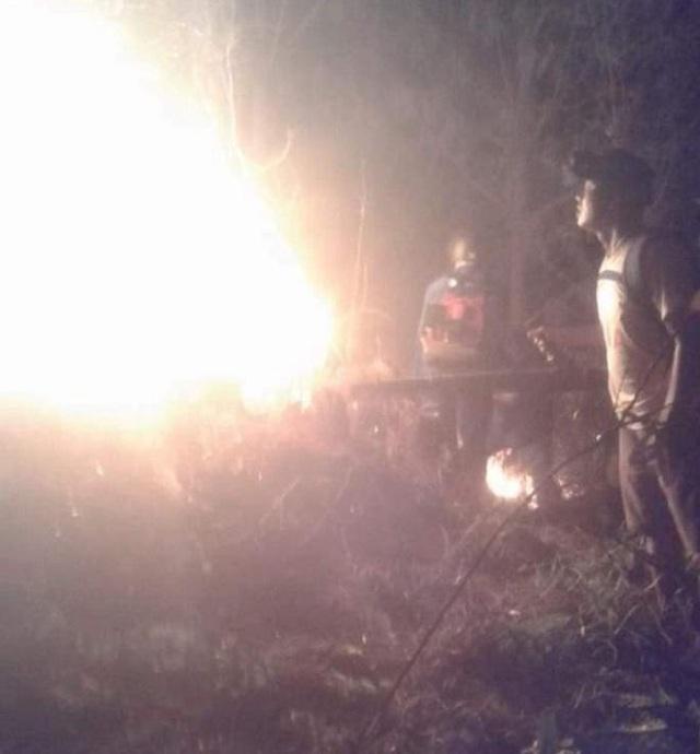 Hàng trăm người nỗ lực khống chế cháy rừng ở Hà Tĩnh - Ảnh 2.