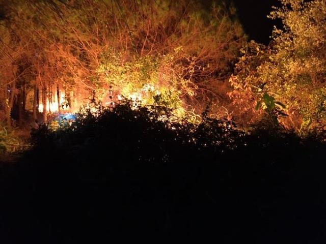 Hàng trăm người nỗ lực khống chế cháy rừng ở Hà Tĩnh - Ảnh 1.