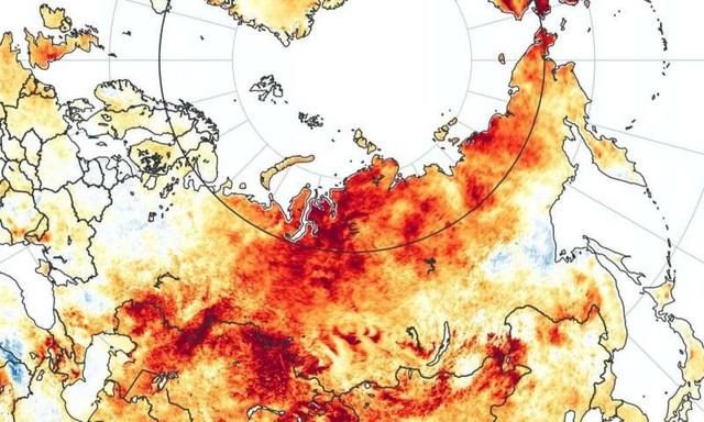 Nóng kỷ lục 38 độ C đảo lộn hoàn toàn cuộc sống nơi lạnh nhất thế giới - Ảnh 1.