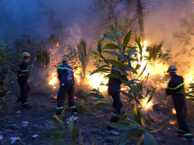 Liên tiếp cháy rừng ở Nghệ An - Ảnh 2.