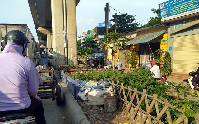 Đường sắt Cát Linh - Hà Đông chưa hẹn ngày vận hành, nhưng dân có thể... trồng rau, nuôi gà ngay phía dưới - Ảnh 2.