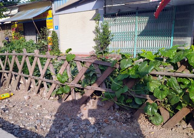 Đường sắt Cát Linh - Hà Đông chưa hẹn ngày vận hành, nhưng dân có thể... trồng rau, nuôi gà ngay phía dưới - Ảnh 4.